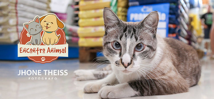 2º Encontro Animal | Pet Shop Agro Aves – It. Central